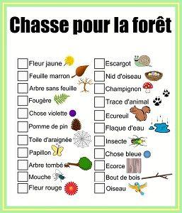 Chasse pour la forêt