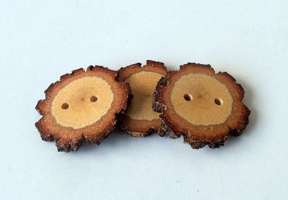 Wood Buttons  Branch Buttons  Slim Handmade by forestinspiration, $5.00