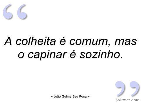 Mais Guimarães Rosa
