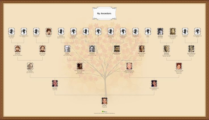 A more traditional but classy genealogy wall chart.