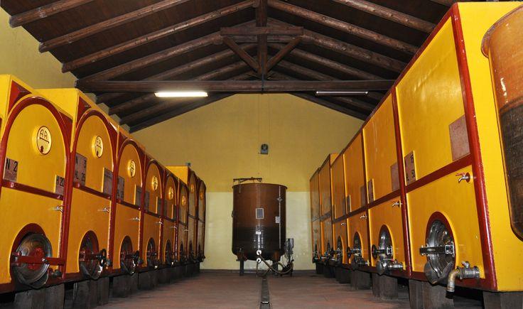 Cantina dell'Azienda Agricola Cava dei Vini, qui vengono lavorate le uve fino ad arrivare alle 18 etichette di nostra produzione. #wine #piedmont #italy