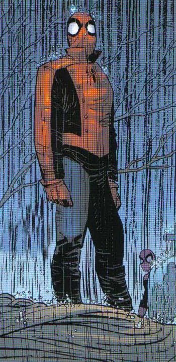 Spider-man(Last Stand): 首次出場在Amazing Spider-ManVol 2 #58,來自Earth-312500,一個有可能發生的未來。這個宇宙的Spider-man仍然是Peter Parker。在這個宇宙裡NYPD要求Spider-man投降並承認自己的罪行,Spider-man認為自己沒錯,不肯投降,最後在和NYPD的戰鬥中被NYPD的人槍殺。
