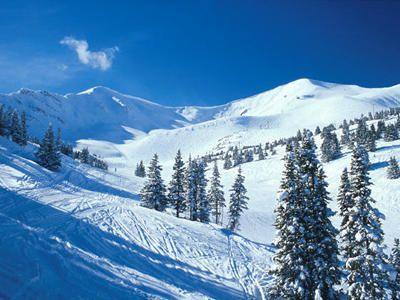 Marmot Basin, Jasper National Park!  Gorgeous place to ski!