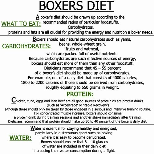 boxers diet - Be a Professional Boxer Boxing is a sport of endurance, speed , boxers diet agility and strength. As in most sports , the best way you boxers diet - Be a Professional Boxer ....