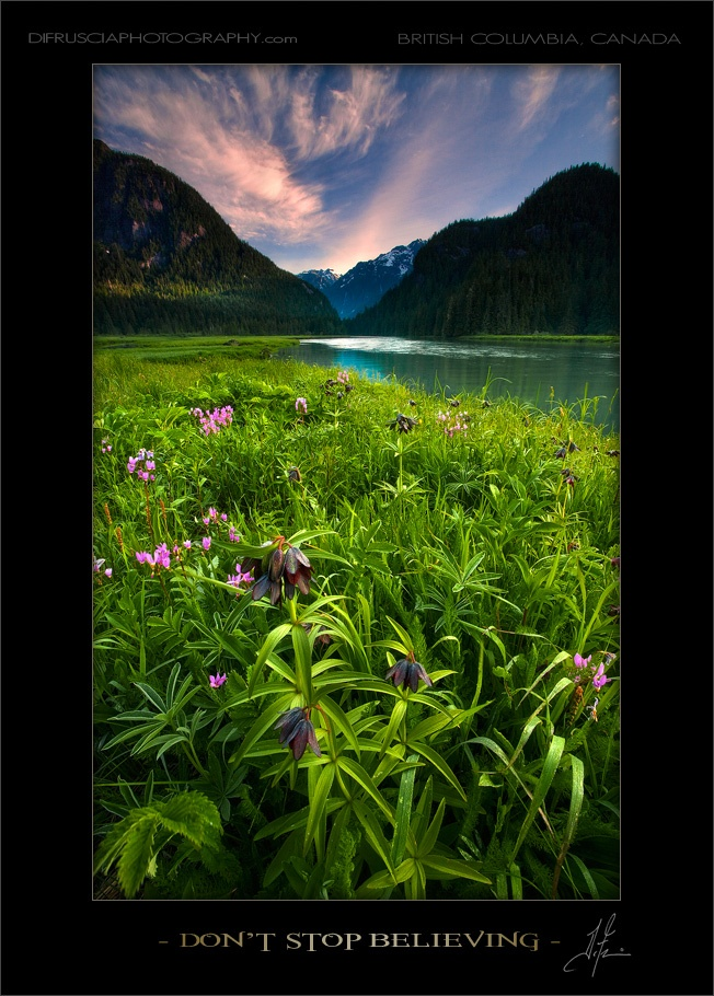 DI Fruscia Photography - British Columbia, Canada