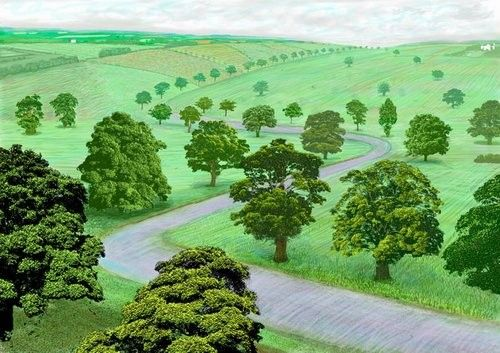 David Hockney (Landscapes) | Andrew Emberson