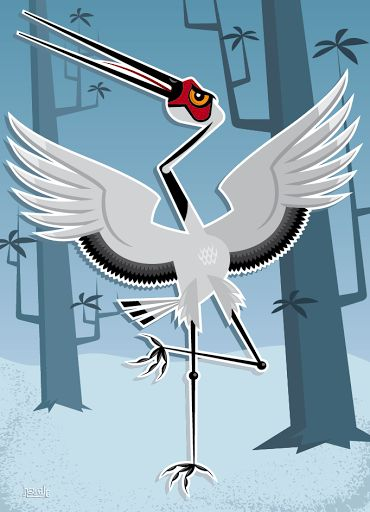 Snow Crane vector illustration designed by Paul Howalt for Kono Magazine's endangered species series. #TactixCreative #crane #graphicdesign