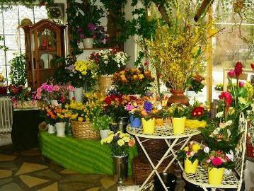 Lovely Dekoration f r den Garten von Ali Oguzhan Garten und Landschaftsbau Baumschule in Berlin