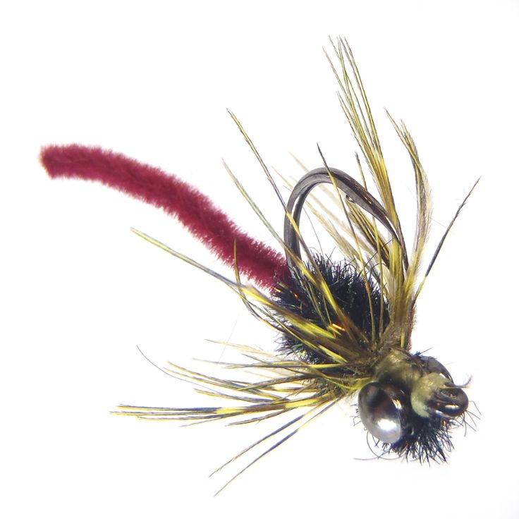 Fly-Carpin:  John Montana's Hybrid Killer Carp Fly. Carp suck these up!