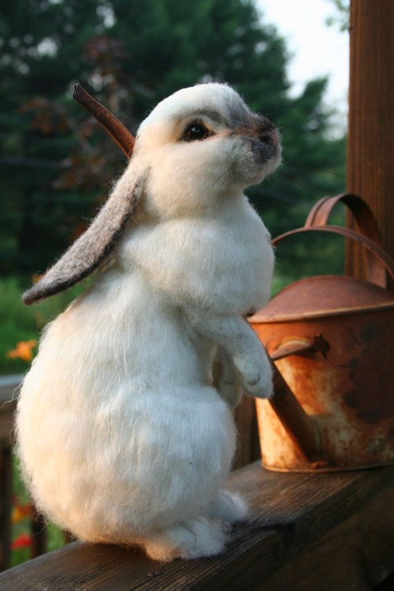 I just want to pick him up and squeeze him!    OOAK Needle felted Alpaca Life Size Lop Ear Bunny Rabbit Poseable
