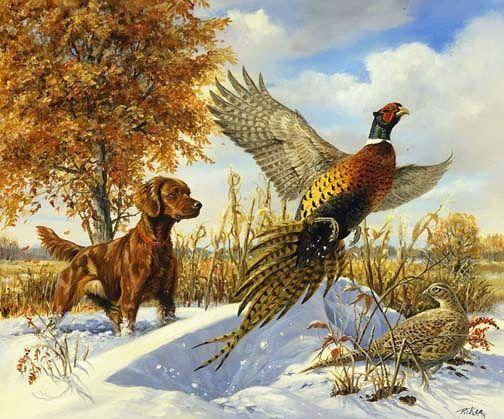 Ohota I Rybalka Kartinki Dlya Dekupazha Obsuzhdenie Na Liveinternet Rossijskij Servis Onlajn Dnevnikov Pheasanthunting Hunting Art Irish Setter Hunting