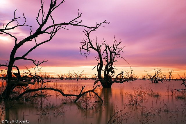 Sunset at Menindee Lakes, Outback NSW, Australia
