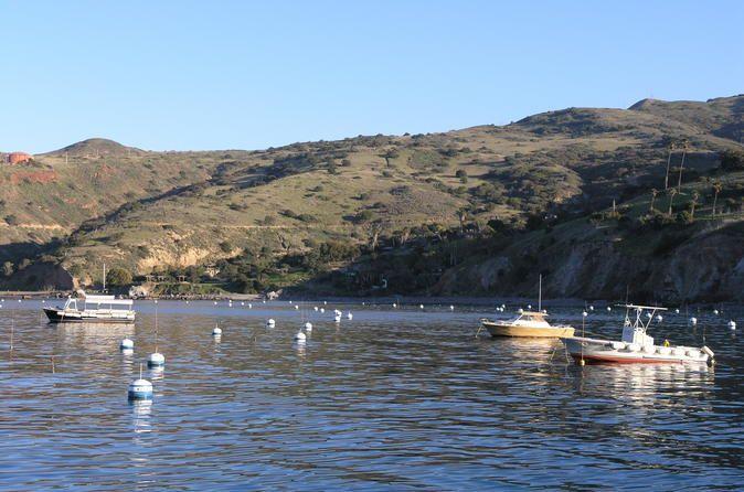 Catalina Island Two Harbors Tour from Avalon - TripAdvisor
