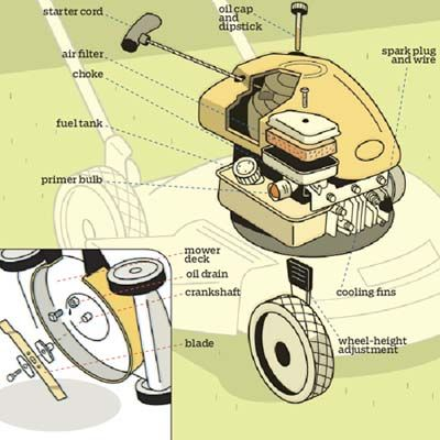Know Your Lawn Mower When your gas-powered cutter isn't doing the job, diagnosing and fixing the problem—or telling the mechanic what's wrong—is easy when you know what to look for