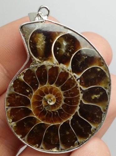 Natural-Ammonite-Fossil-Pendant