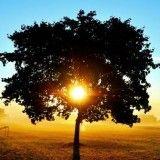 9 reggeli szokás, ami szuperhatékonnyá tesz