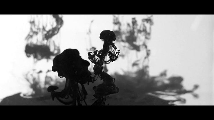 Ink and Water came together as a film under the artistic direction of Malachi Rempen, with the graceful, psychedelic visuals provided by Boa Simon and edited by…