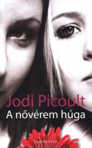 jodi-picoult-a-noverem-huga-pdf