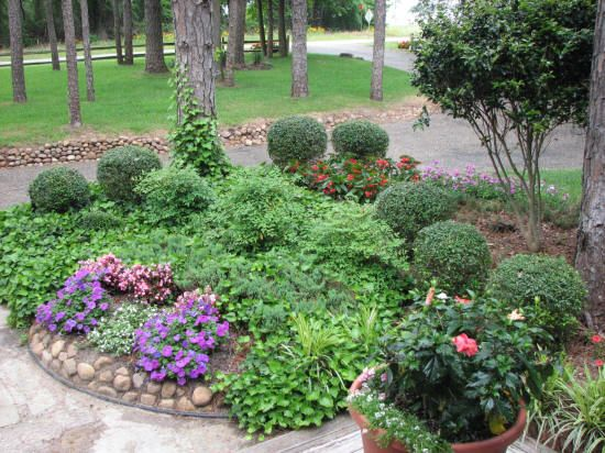 Idea landscaping small trees for front yard front yard for Landscaping on a budget
