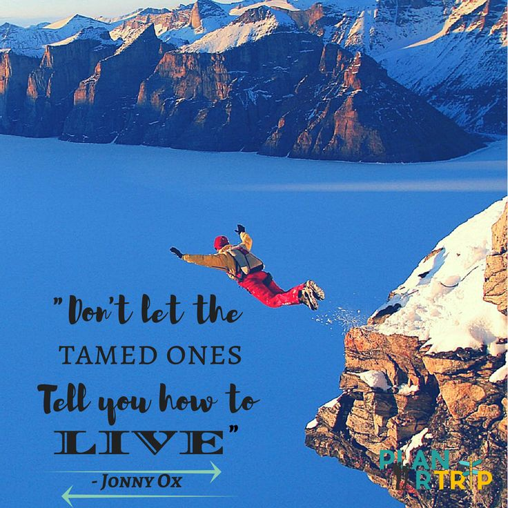 """Inspiring Travel Quotes. """"Dont let the tamed tell you how to live"""""""