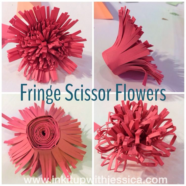 Fringe Scissor Flowers  Stampin' Up!