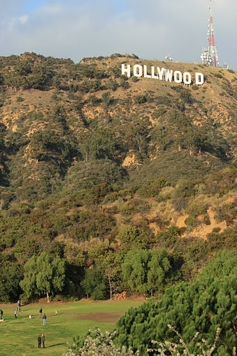 Hollywood Dog Park go there in your #shoes from #FamousFootwear!
