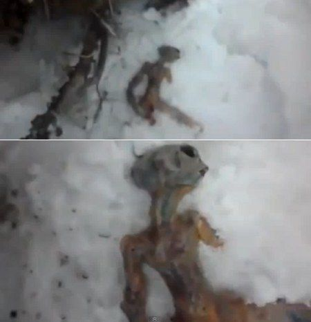 crashed alien in russia: