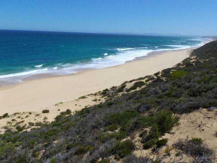 Beach at Still Bay, SA