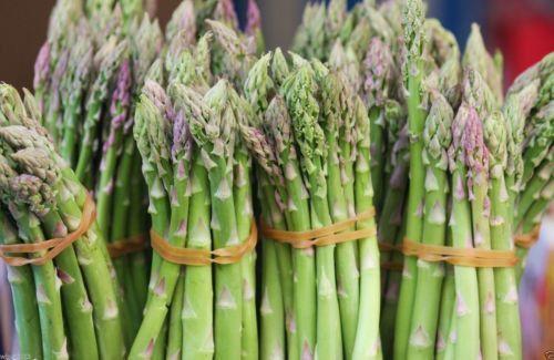 ASPARAGUS SEEDS, (Mary Washingto ) 400 Organic,Heirloom Seeds~Perennial