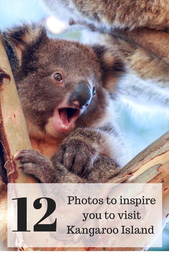12 photos to inspire you to visit beautiful Kangaroo Island.
