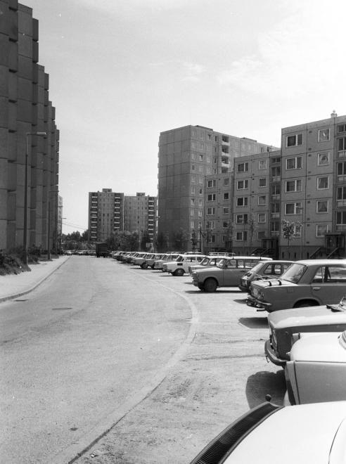 Palotaváros (Lenin lakótelep), Sziget utca.