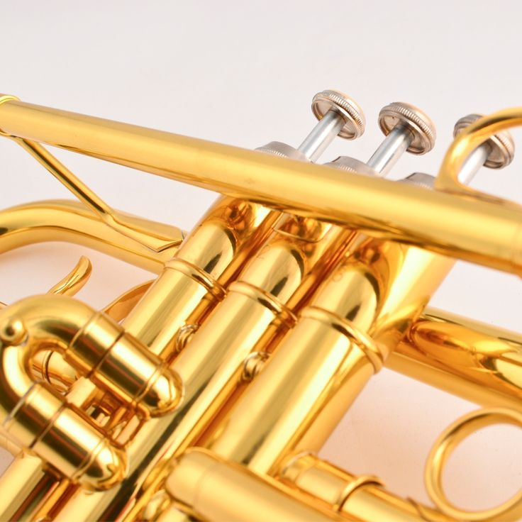 144.69$  Buy now - http://alixgh.worldwells.pw/go.php?t=32548394418 - Free shipping Trumpet Bb B Flat JYTR-E100G Professional trumpet Brass wind instruments with trumpet case and mouthpiece 144.69$