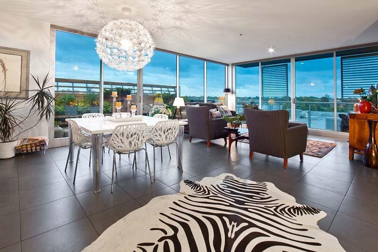 Zebra rug - what a view!     Nelson Alexander Real Estate  Melbourne, Australia    FITZROY NORTH, 409 & 410/4 Bik Lane