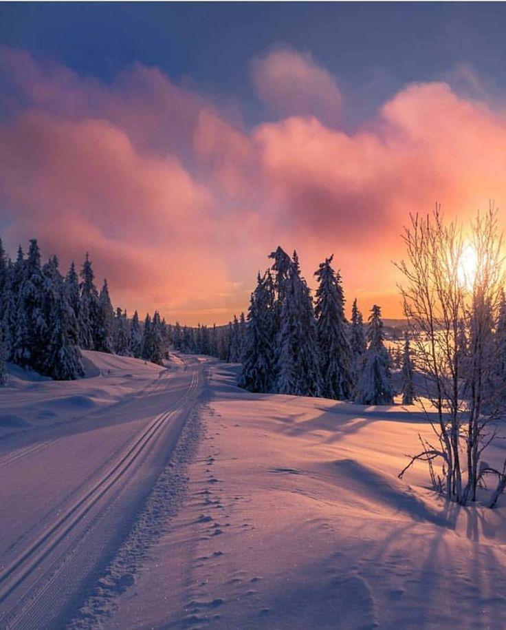 Winter ❄️ Glow