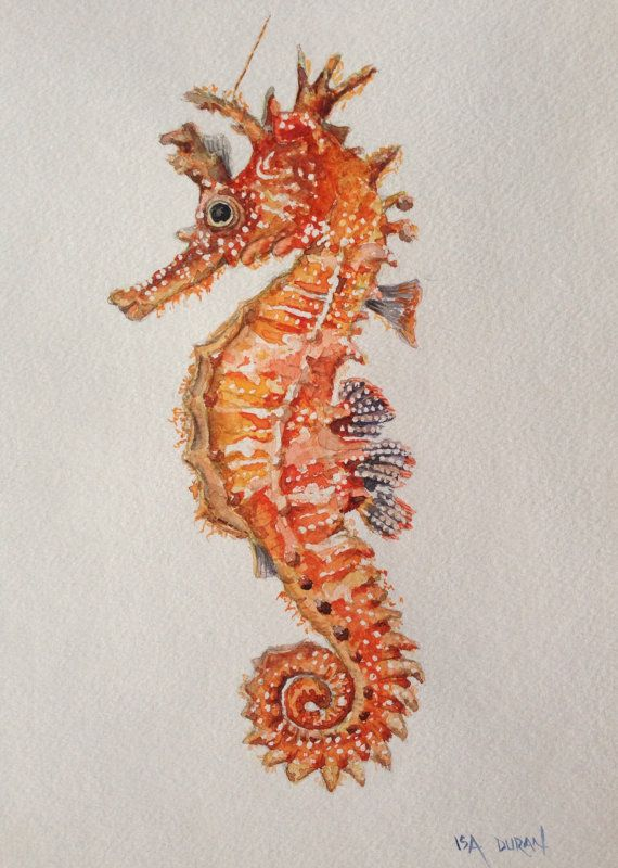 "Seahorse, original seahorse watercolor painting, Seahorse painting, 9""x12"" on Etsy, $48.00 More"