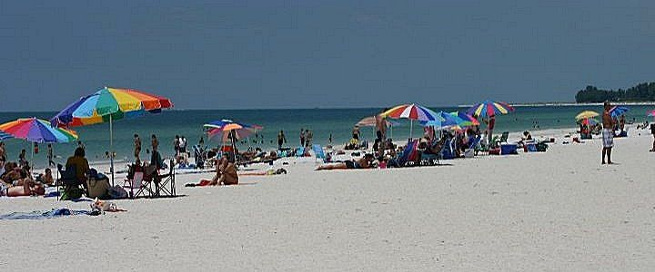 Image result for manatee beach florida