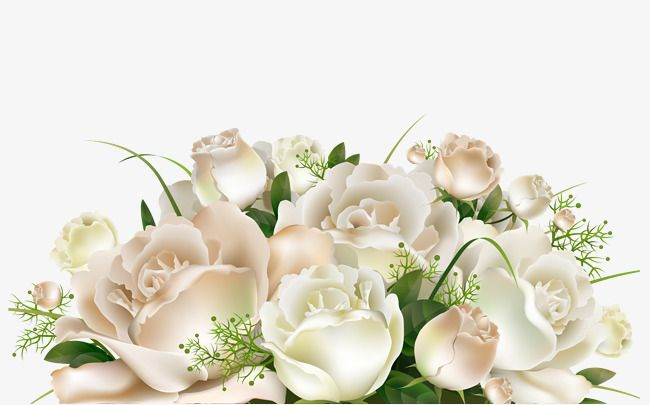 Hd Plant White Rose Cartoon Green Leaves Flowers Decorative Patterns Flowers White Rose Green Leaves Decorative Patt Clipart Fleurs Cadre Fleur Peinture Fleurs