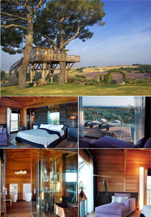 Agriturismo La Piantata L'eco vacanza diventa chic nella casa sull'albero!