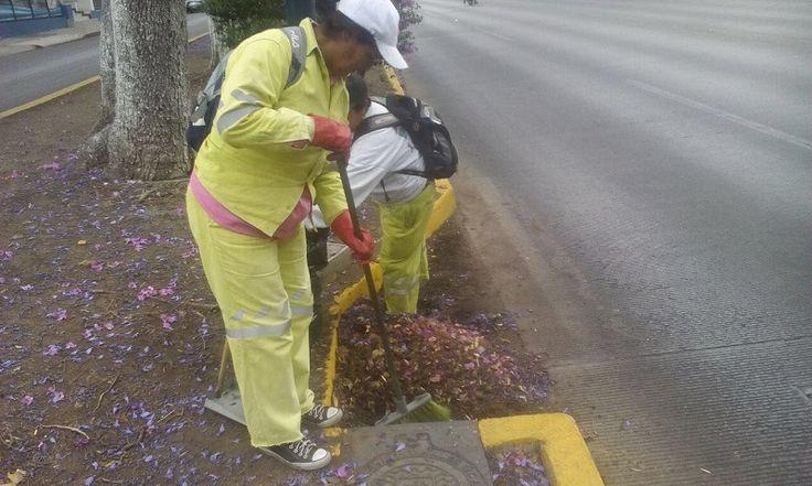 El operativo de limpieza es permanente, toda vez que cuadrillas especiales se encargan los 365 días del año del barrido manual y acopio de residuos sólidos en la vía pública, ...