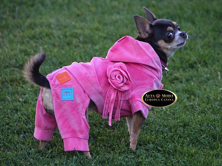 Moda Canina Color Rosa. Ropa y Accesorios Caninos. En moda canina, accesorios y ropa para perros, el color rosa es con el que mas se confecciona y fabrica.    Asi podemos comprar camas para perros de color rosa, bolsos para llevarlos de viaje, collares rosas para perros, abrigos, vestidos, chan