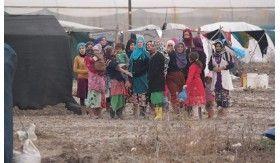Bersua di Kamp Adanalioglu (1): Hangat Tawa Lenyapkan Sekat Keasingan
