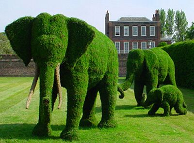 pachyderm topiary: