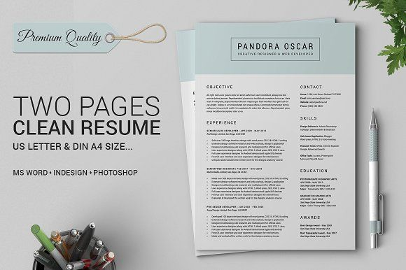 2 Pages Clean Resume CV - Pandora by SNIPESCIENTIST on @creativemarket