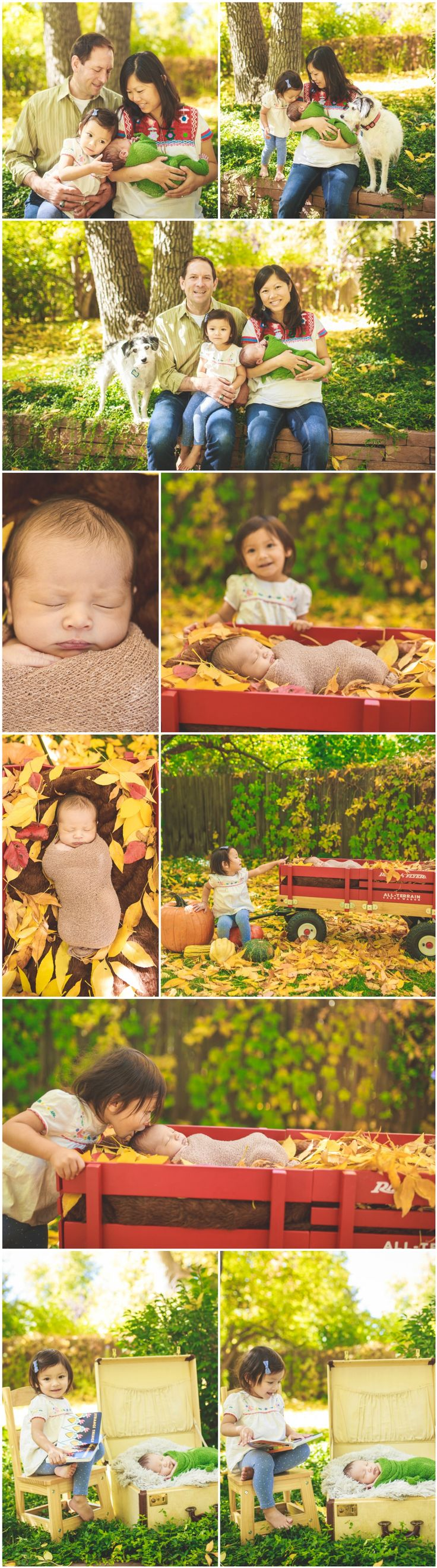 Newborn Photography Ideas and Inspiration   Newborn Poses   Denver Newborn Photographers   Newborn and Family Portraits