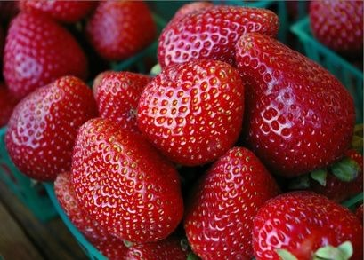 When to Plant Strawberries in Zone 6? thumbnail