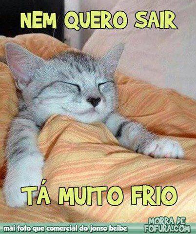 Sue...pour toujours...: Boa Noite...Fiquem com Deus...Beijos...