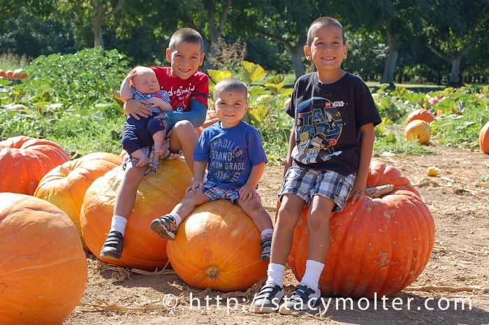 Pumpkin Farm Photography Tips - Fancy Shanty | Stacy Molter