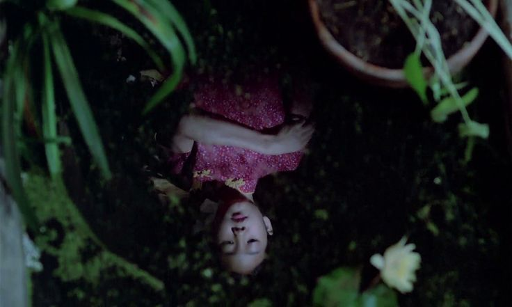 "lostinpersona: ""The Scent of Green Papaya, Tran Anh Hung (1993) """