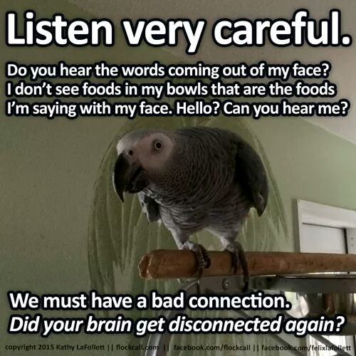 Yes I can hear you