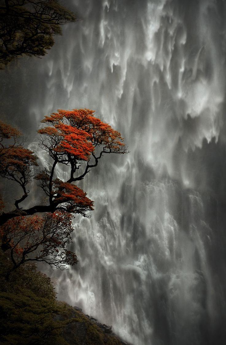Devil's Punchbowl Falls, New Zealand: